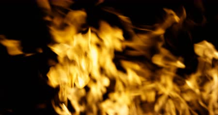 Fire flame burn element with alpha channel 4K