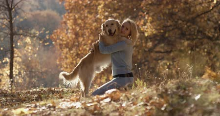 лабрадор : young beautiful Woman in the park with her retriever labrador dog. Autumn background