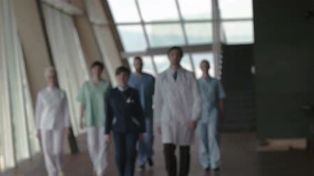 сотрудники : doctors team walking in modern hospital corridor indoors, poeople group Стоковые видеозаписи