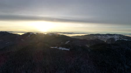 muddy : aerial footage of winter forest
