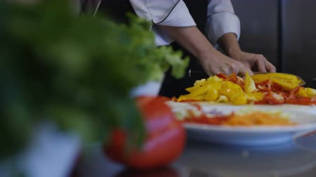 placa de corte : Chef Chopping Vegetables Food Prep Kitchen Restaurant Culinary Stock Footage