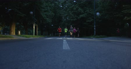 Group of runners seen from behind, jogging together in city park