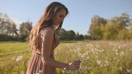 natural tranquil : Beautiful girl with long hair goes in a green meadow, and touch the flowers.