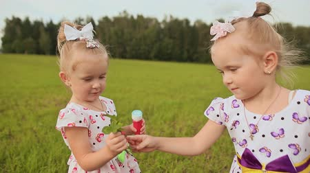 o : In summer, small twin sisters play in the field. Children give each other bouquets with hugs and kisses.