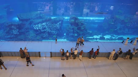 biggest : Dubai, UAE - May 15, 2018: Aquarium in Dubai Mall - worlds largest shopping mall, Downtown Burj Khalifa.