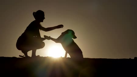 rescue dog : A silhouette of a young woman and her pet Mix Dog shaking hands at sunset.  With copy-space in sky.