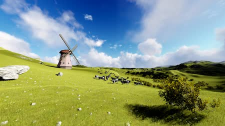 Cows on the meadow and old windmill, animation Stock Footage