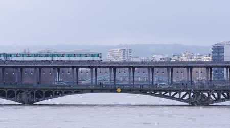 bir hakeim : train passing over Pont de Bir-Hakeim Stock Footage