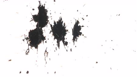 kleks : Multiple dots of black ink splashed over textured white background