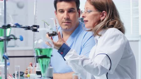 pipet : Biochemistry scientist showing a sample to her assistant. Work in modern laboratory