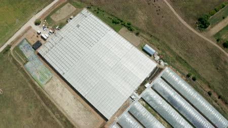 Aerial view flying over an industrial greenhouse with growing green salad.