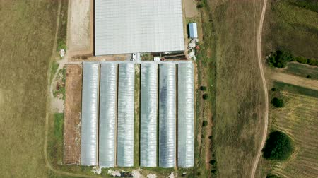 Drone flying over a industrial greenhouse with vegetables. Modern agriculture.