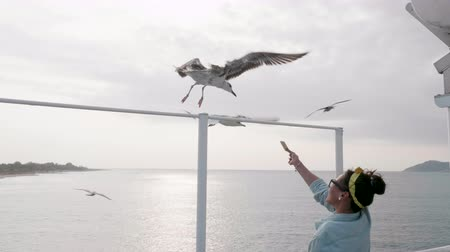 személyszállító hajó : Seagulls eating food from beautiful woman on a ferry boat sailing on open sea. Stock mozgókép
