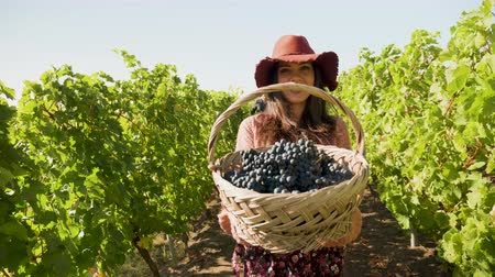 grape basket : Smiling woman lifting a basket with grapes to the camera, slow motion footage