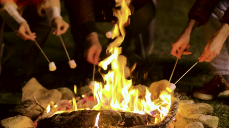 light roast : Close up of friends roasting marshmallows on camp fire in a cold night of autumn in the mountains. Stock Footage