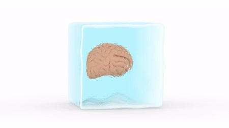 zmrazit : Brain Frozen in a Block of Ice. White background, loop, created in 4K, 3d animation Dostupné videozáznamy