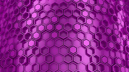 マゼンタ : Background of Hexagons