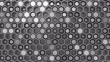 hitech : Background of Hexagons