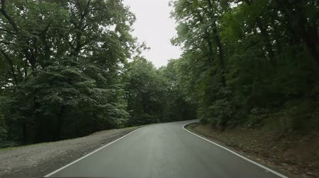 lovas : On board camera - driving through single lane road at park