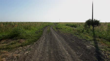 talaj : Country road at farmland during summer drought; steadicam Stock mozgókép