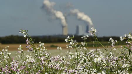 carvão gigante : HD 1080 static: coal fired power plant making air pollution; flourishing crop fields in foreground;