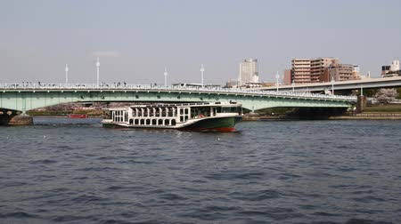 metropolitní : Sumida River in the spring