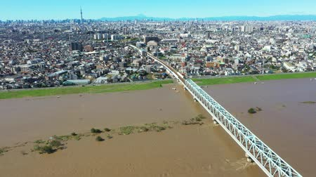 Aerial view of the flooded Edogawa Stock Footage