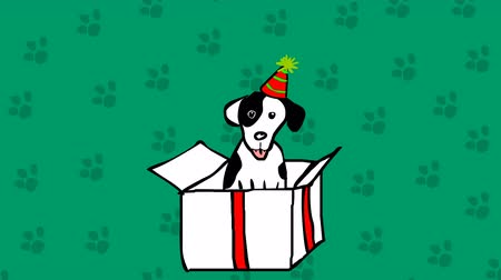 cachorro : Cute dog in a box. Bithday present hand drawn cartoon animation. Stock Footage
