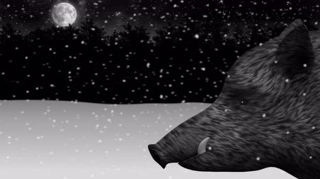 Wild boar in a night snowy winter forest animation