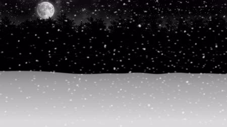 moving through night winter snow forest animation
