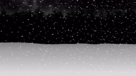 moving through night winter snow forest animation2 Stock mozgókép