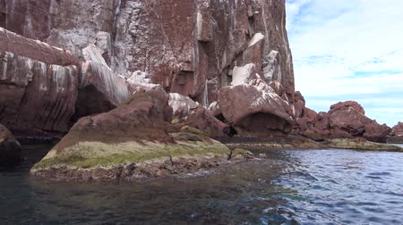 heyecan verici : A exciting trip on the sea of Cortez. Mexico.