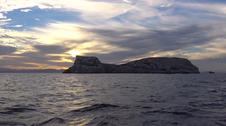 heyecan verici : An exciting trip on the sea of Cortez. Mexico. Stok Video