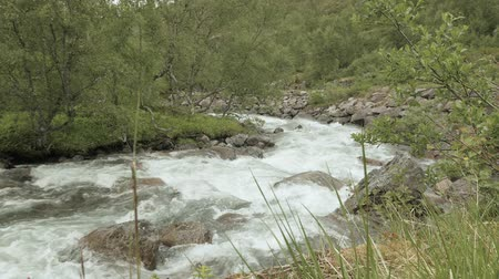 kedah : River in mountains. Norway Stock Footage