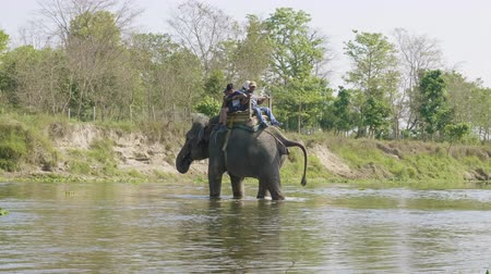 CHITWAN, NEPAL - MARCH, 2018: Elephant safari with the tourists in national park.