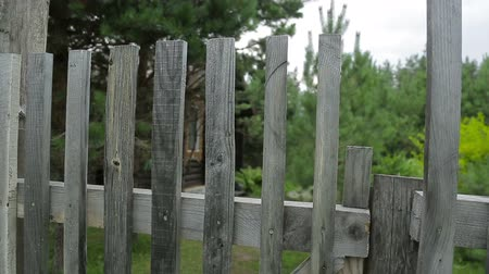 illegal alien : The gate in the fence