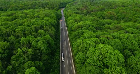 asphalt road : Aerial view flying over road with car moving, that through lane green forest. Car driving along the forest road. AERIAL: Car driving through pine forest. Drone shot from above Stock Footage