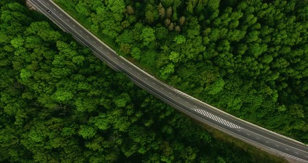 топ : Aerial view flying over road with car moving, that through lane green forest. Car driving along the forest road. AERIAL: Car driving through pine forest. Drone shot from above Стоковые видеозаписи