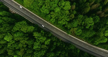 şartlar : Aerial view flying over road with car moving, that through lane green forest. Car driving along the forest road. AERIAL: Car driving through pine forest. Drone shot from above Stok Video