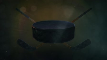 trest : Hockey Puck in Epic Lighting