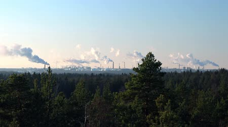 avançar : Mineral oil refinery with smoking chimneys on the horizon and natural coniferous forest in the foreground  A big mineral oil refinery on a cold and sunny winter day with smoking chimneys all over the horizon. The beauty of the forest in the foreground co Stock Footage