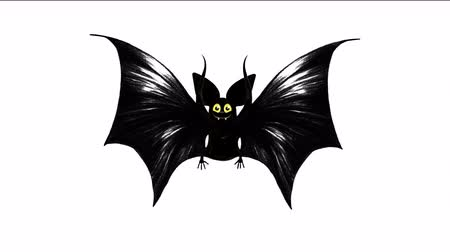 паук : Bat in the dark and the character Happy Halloween on halloween concept.