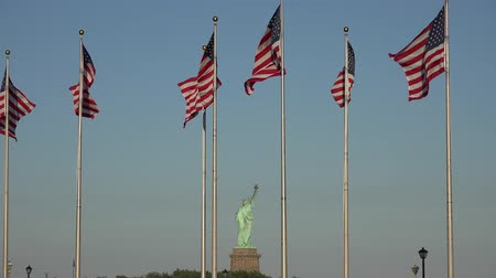 democrats : American Flags, Statue of Liberty