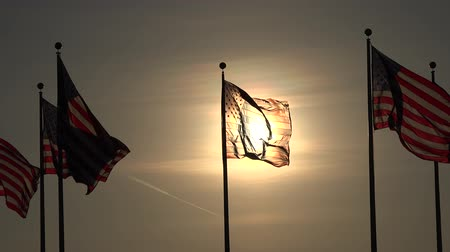 flaga : American Flags at Sunset, United States, 4th of July