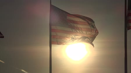 egyesült : American Flags at Sunset, United States, 4th of July