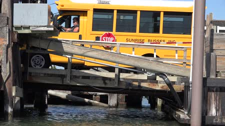 trener : School Bus, School, Academics, Bridge