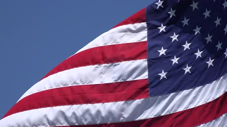 democrats : American Flags, United States, 4th of July Stock Footage