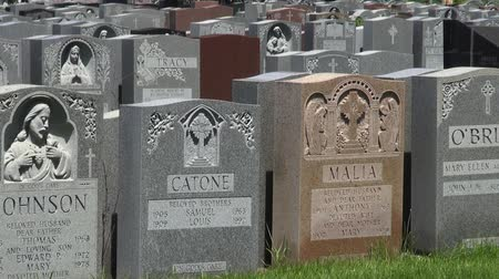 veterano : Cemetary, Graveyards, Tombs, Tombstones, Death Stock Footage