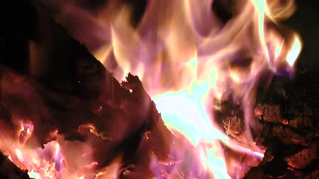 kamp ateşi : Fire, Flames, Blazes, Heat Stok Video