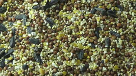 kör alakú : Seeds, Grains, Pet Foods, Grains